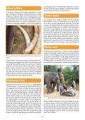 Infoblad olifanten - Wereld Natuur Fonds - Page 2