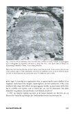 Download TEXT (2358 KB pdf) - AncientFields.dk - Page 3