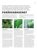 Download Spis Bare nr 5 - Page 5