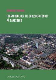 Læs dommerbetænkningen - Carlsberg Byen