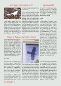 Fuglevennen 2-2006 - Page 6