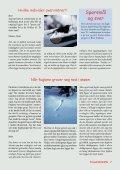 Fuglevennen 2-2006 - Page 7