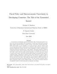 Fiscal Policy and Macroeconomic Uncertainty in Developing Countries