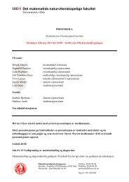 Protokoll - Det matematisk-naturvitenskapelige fakultet ...