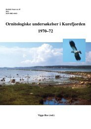 Ornitologiske undersøkelser i Kurefjorden 1970–72 - Norsk ...
