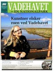 Kunstner elsker roen ved Vadehavet - Fanø Kommune