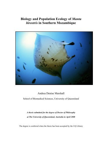 Biology and Population Ecology of Manta birostris in southern ... - Free