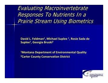 Evaluating Macroinvertebrate Responses To Nutrients In a Prairie ...