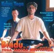 Lad dig ikke bedrage - Skandinavisk yoga og meditasjonsskole