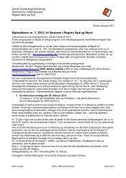 Nyhedsbrev nr. 1, 2013, til Seniorer i Region Nord og Syd - Dansk ...