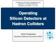 Operating silicon detectors at hadron colliders - IRTG Heidelberg