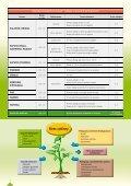Katalog sadowniczy 2012 - Osadkowski SA - Page 4
