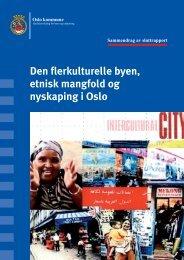 sammendrag av rapport 2006 - IMDi