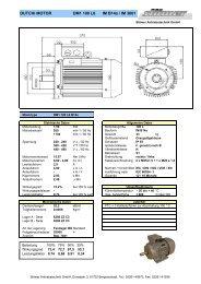 DM1 100 L6 B14a - Stoewer Antriebstechnik
