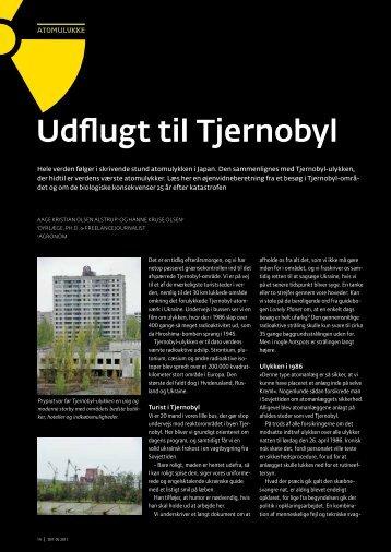 Udflugt til Tjernobyl - Elbo