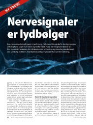 Nervesignaler er lydbølger - Membrane