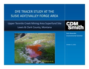 Robert Alexander. Dye Tracer Study At The Susie Adit/Upper Valley