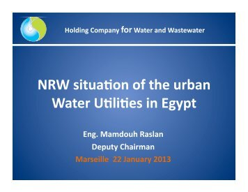 Egypt Holding Company for Water and Wastewater (HCWW) - CMI