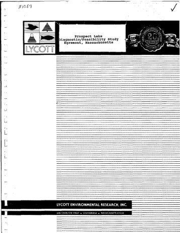 prospect lake diagnostic_feasibility study egremont, massachusetts