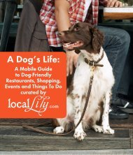 A Dog's Life: - Local Lily
