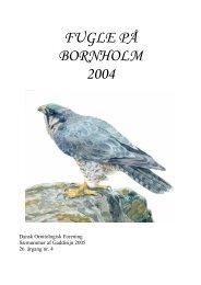 Fugle på Bornholm 2004 (3,7 Mb) - DOF Bornholm