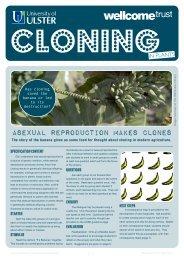 6 cloning plants