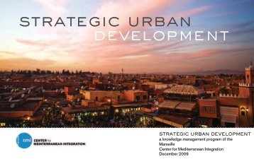 Brochure of Strategic Urban Development program overview - CMI