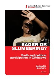 Eager or Slumbering? Youth and Political Participation in Zimbabwe