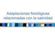 Adaptaciones Fisiológicas De Los Animales Acuáticos Frente a Los ...