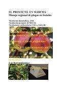 HACIA UN MANEJO REGIONAL DE PLAGAS PORQUE? *Los ... - Page 2