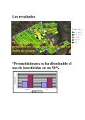 HACIA UN MANEJO REGIONAL DE PLAGAS PORQUE? *Los ... - Page 3