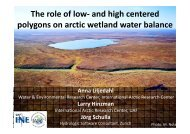 and high centered polygons on arctic wetland water balance