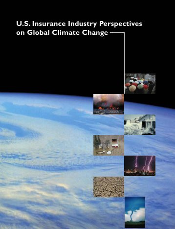 U.S. Insurance Industry Perspectives on Global Climate Change