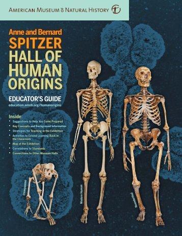 Hall of Human Origins Educator's Guide - American Museum of ...