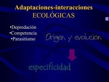 Adaptaciones en las Interacciones biologicas