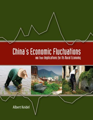 China's Economic Fluctuations - Carnegie Endowment for ...