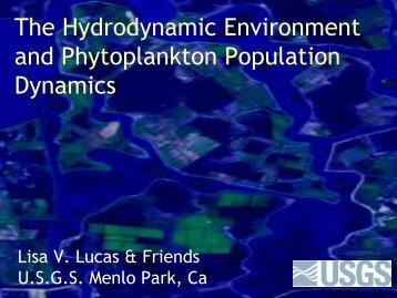 The Hydrodynamic Environment and Phytoplankton Population ...