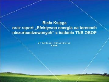 """Biała Księga oraz raport """"Efektywna energia na terenach ... - p.wnp.pl"""