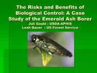 Emerald Ash Borer Agrilus planipennis Fairmaire - School of Forest ...