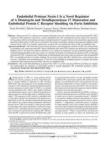 Endothelial Protease Nexin-1 Is a Novel Regulator ... - INSERM U698