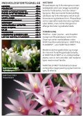 FAIRYTALE FIRE® - Gartneriet PKM - Page 2