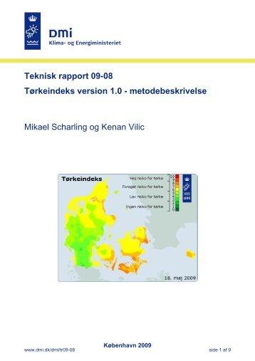 Læs rapporten/Read the report - DMI
