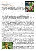 Træernes symbolik - Home - Page 2
