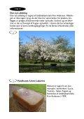 En guide til en gåtur på Løgumkloster Kirkegård - Page 6