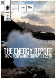 The Energy Report - WWF UK