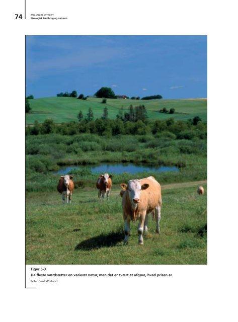 Økologisk landbrug og naturen - DCE - Nationalt Center for Miljø og ...