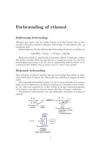 (Biokemisk) forbrænding af alkohol