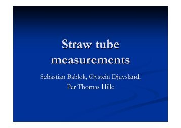 Straw tube measurements - IRTG Heidelberg