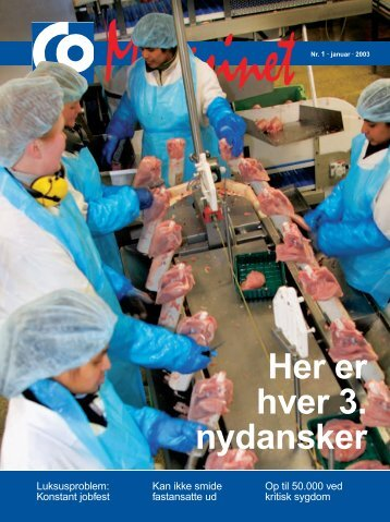 Her er hver 3. nydansker - CO-industri