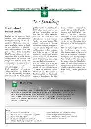 Der Steckling - des Deutschen Hanf Verband
